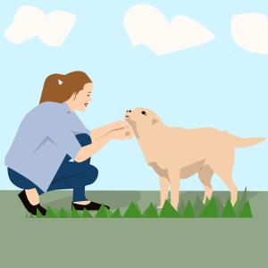 בעלים של הכלב